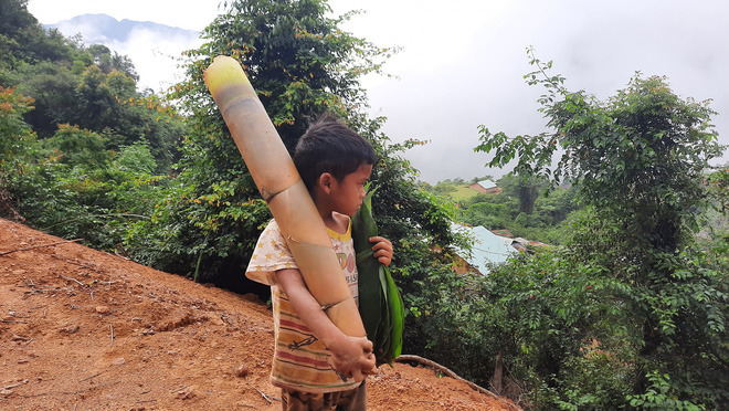 Cậu bé chân trần đi bộ đường núi, vác cây măng trên vai gửi tặng người dân ở tâm dịch Đà Nẵng - Ảnh 3