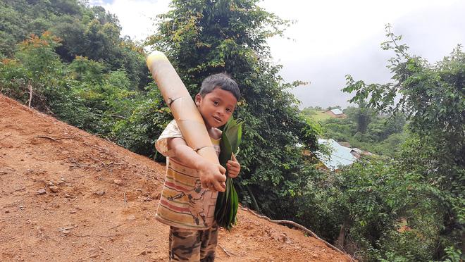 Cậu bé chân trần đi bộ đường núi, vác cây măng trên vai gửi tặng người dân ở tâm dịch Đà Nẵng - Ảnh 2