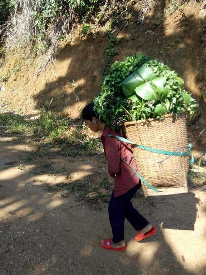 Cậu bé chân trần đi bộ đường núi, vác cây măng trên vai gửi tặng người dân ở tâm dịch Đà Nẵng - Ảnh 5