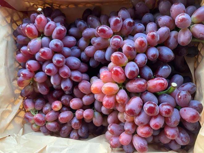 Mẹo bảo quản trái cây mâm ngũ quả tươi lâu gấp đôi mà không cần đến tủ lạnh - 5